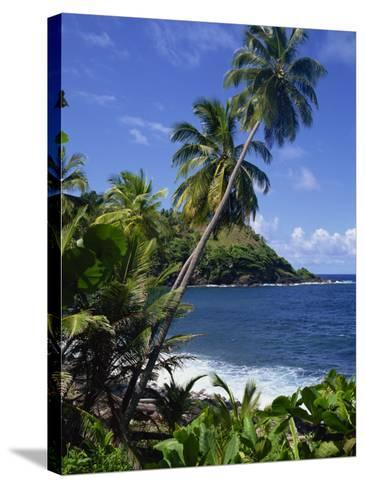 North East Coastline, St. Vincent, Windward Islands, West Indies, Caribbean, Central America-Wood Nick-Stretched Canvas Print