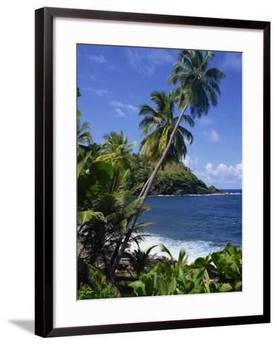 North East Coastline, St. Vincent, Windward Islands, West Indies, Caribbean, Central America-Wood Nick-Framed Art Print