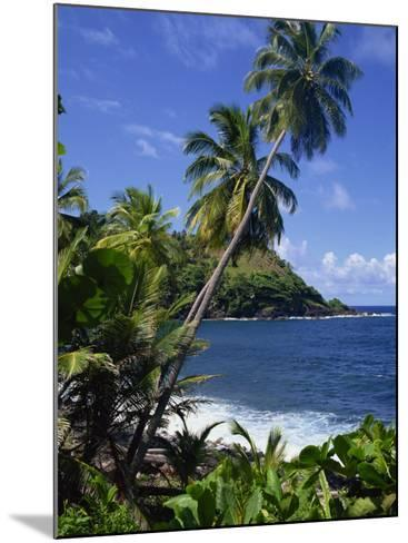 North East Coastline, St. Vincent, Windward Islands, West Indies, Caribbean, Central America-Wood Nick-Mounted Photographic Print