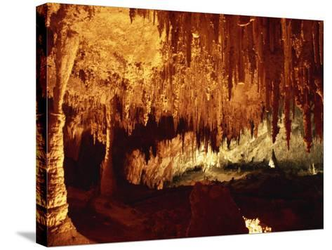 Carlsbad Caverns, Carlsbad Caverns National Park, UNESCO World Heritage Site, New Mexico, USA-Woolfitt Adam-Stretched Canvas Print