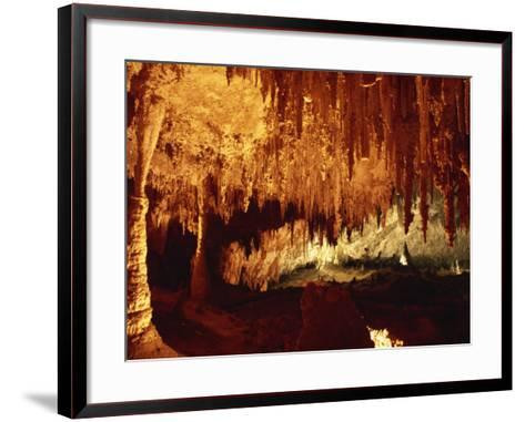 Carlsbad Caverns, Carlsbad Caverns National Park, UNESCO World Heritage Site, New Mexico, USA-Woolfitt Adam-Framed Art Print