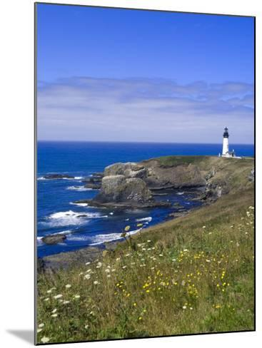 Yaquina Head Lighthouse, Oregon, United States of America, North America-DeFreitas Michael-Mounted Photographic Print