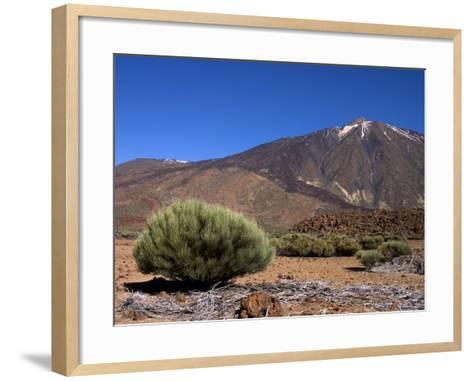 Mount Teide, Parque Nacional De Las Canadas Del Teide Tenerife, Canary Islands-White Gary-Framed Art Print