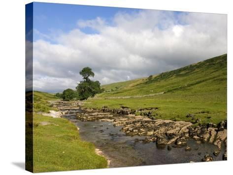 River Wharfe, Upper Wharfedale, Yorkshire Dales National Park, North Yorkshire, England, UK-White Gary-Stretched Canvas Print