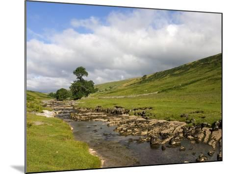 River Wharfe, Upper Wharfedale, Yorkshire Dales National Park, North Yorkshire, England, UK-White Gary-Mounted Photographic Print