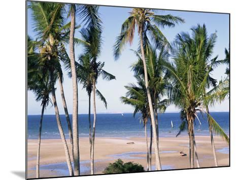 Palm Tree and Tropical Beach on the Coast of Mozambique, Africa-Groenendijk Peter-Mounted Photographic Print