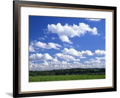 Blue Sky with Puffy White Clouds over Farmland in Lincolnshire, England, United Kingdom, Europe--Framed Art Print