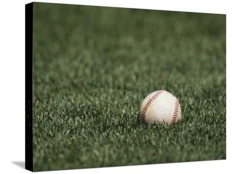Baseball-Steven Sutton-Stretched Canvas Print