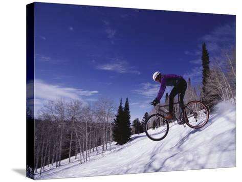 Mountain Biking on Snow--Stretched Canvas Print