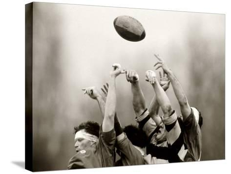 Rugby Player in Action, Paris, France--Stretched Canvas Print