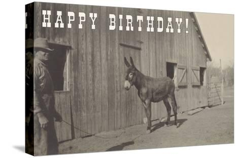 Happy Birthday, Mule and Man--Stretched Canvas Print