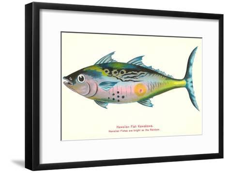 Hawaiian Fish, Kawakawa--Framed Art Print