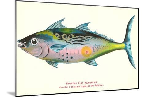 Hawaiian Fish, Kawakawa--Mounted Art Print