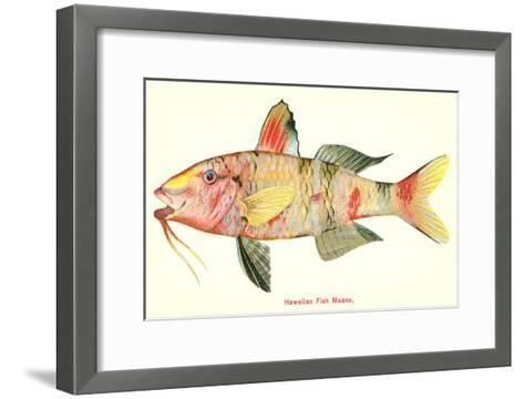 Hawaiian Fish, Moano--Framed Art Print