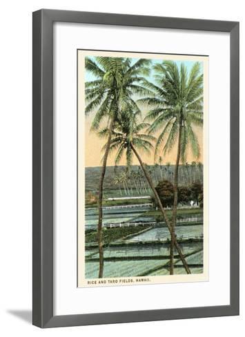 Rice and Taro Fields, Hawaii--Framed Art Print