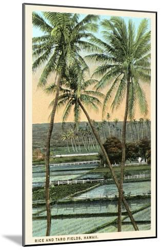 Rice and Taro Fields, Hawaii--Mounted Art Print