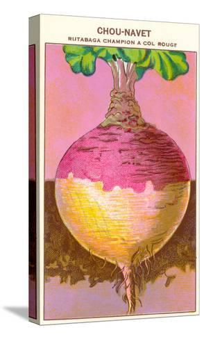 French Rutabaga Seed Packet--Stretched Canvas Print