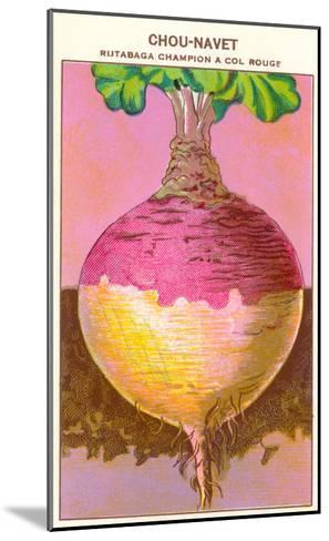French Rutabaga Seed Packet--Mounted Art Print