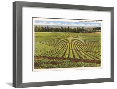 Pineapple Field, Honolulu, Hawaii--Framed Art Print