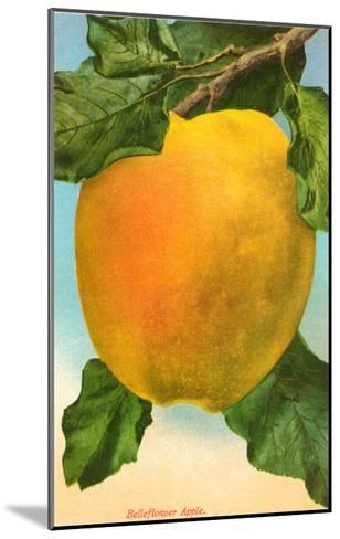 Bellflower Apple--Mounted Art Print