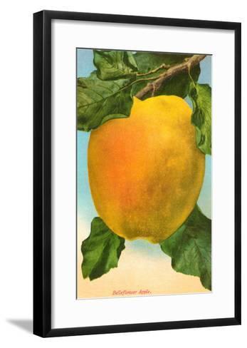 Bellflower Apple--Framed Art Print