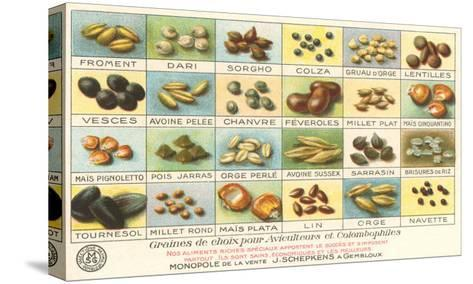 French Grain Chart--Stretched Canvas Print