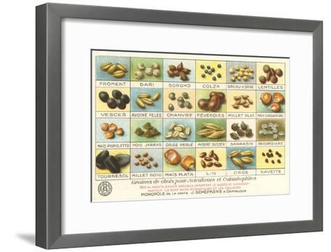 French Grain Chart--Framed Art Print