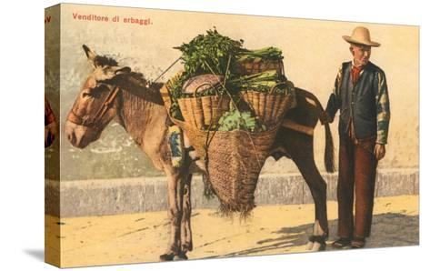 Vegetable Seller with Donkey, Italy--Stretched Canvas Print