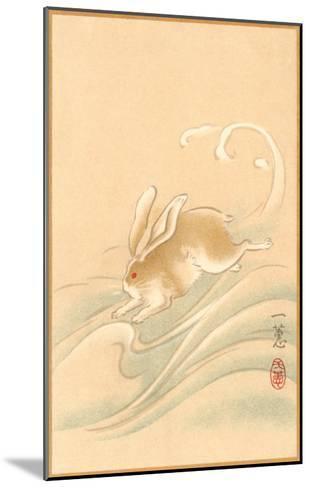Rabbit Playing in Water--Mounted Art Print