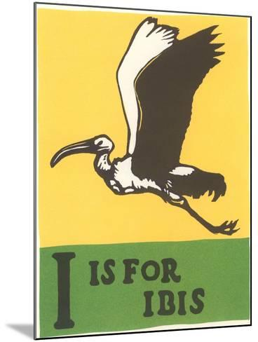I is for Ibis--Mounted Art Print