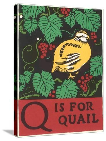 Q is for Quail--Stretched Canvas Print