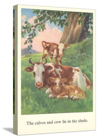Calves and Cows Lie in Shade--Stretched Canvas Print