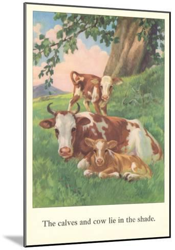 Calves and Cows Lie in Shade--Mounted Art Print
