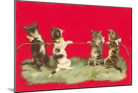 Kittens Playing Tug of War--Mounted Art Print