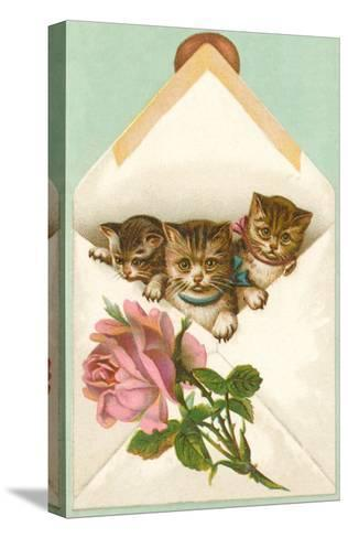 Kittens in Envelope with Rose--Stretched Canvas Print