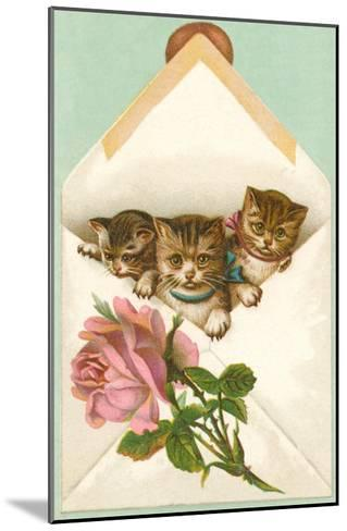 Kittens in Envelope with Rose--Mounted Art Print
