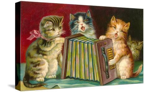 Kittens Playing Concertina--Stretched Canvas Print