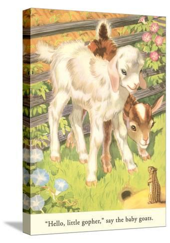 Lambs and Gopher--Stretched Canvas Print