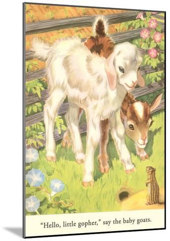 Lambs and Gopher--Mounted Art Print