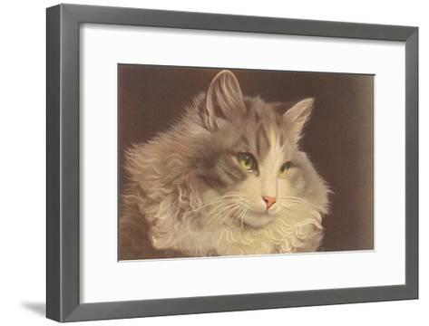 Fluffy Cat--Framed Art Print