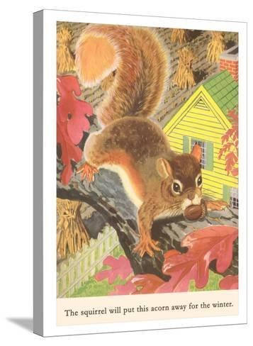 Squirrel with Acorn--Stretched Canvas Print