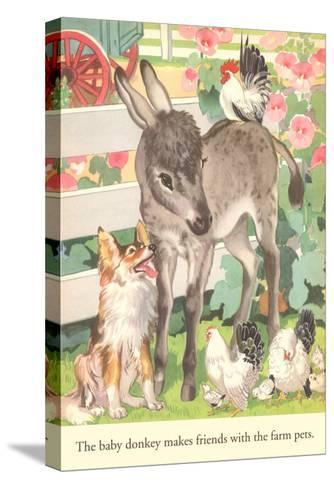Baby Donkey with Farm Animals--Stretched Canvas Print