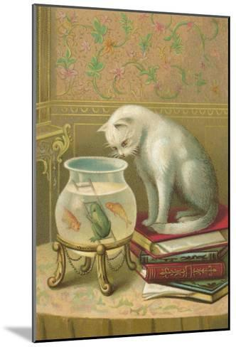 Cat Watching Frog and Fish--Mounted Art Print