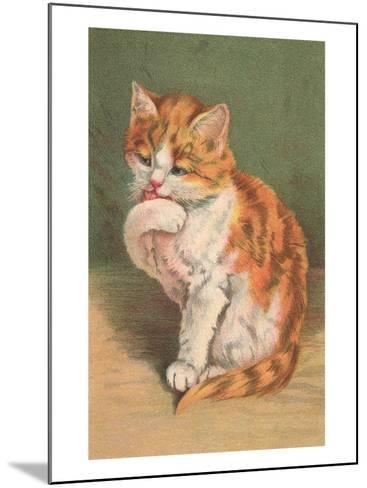 Cat Licking Paw--Mounted Art Print