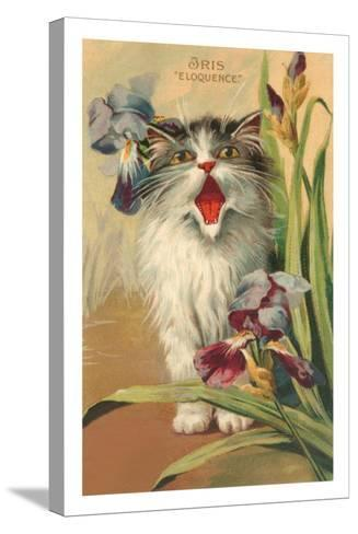 Iris Eloquence with Kitten--Stretched Canvas Print