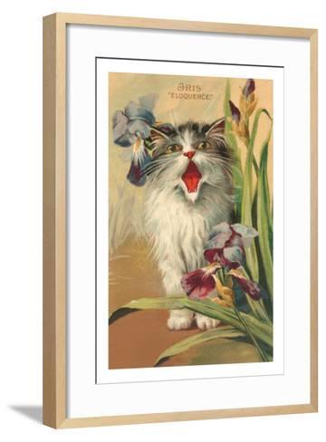Iris Eloquence with Kitten--Framed Art Print