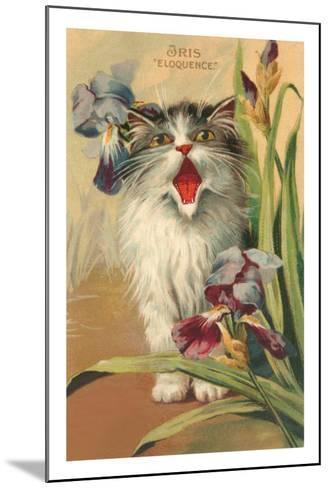 Iris Eloquence with Kitten--Mounted Art Print
