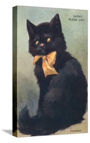 Lucky Black Cat with Bow--Stretched Canvas Print