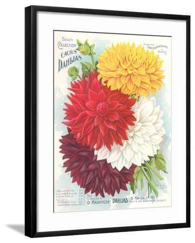 Seed Packet, Dahlias--Framed Art Print