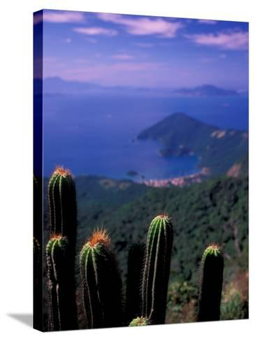 View from Pico Do Papagaio, Ilha Grande, Rio De Janeiro State, Brazil-Julie Bendlin-Stretched Canvas Print